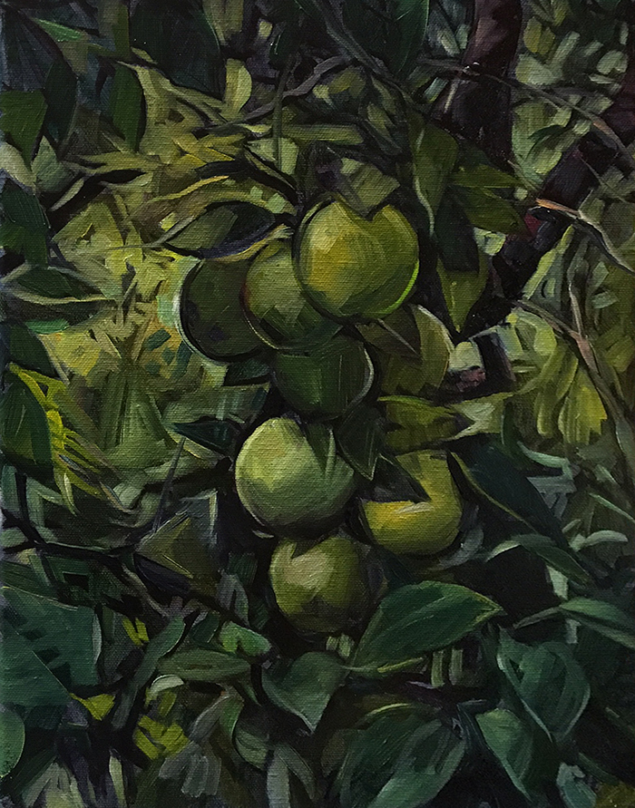 "Fruit Tree In Cuba (oil) 14"" x 11"" $350"