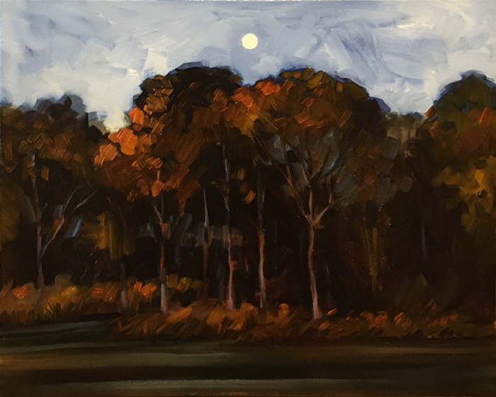 "Newnan's Lake Moonrise (oil) 16""x20"" $650"