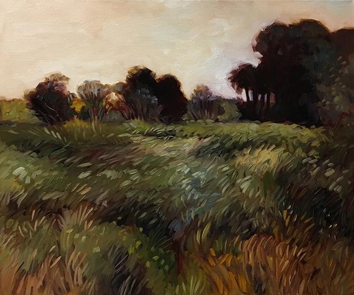 """Payne's Prairie (oil) 20""""x24"""" $800"""