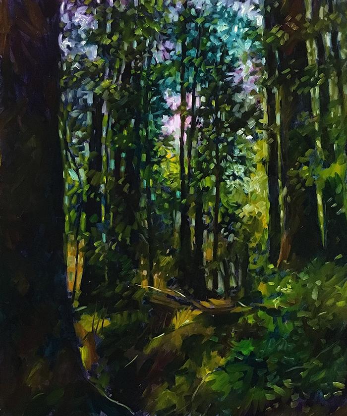 "Redwoods (oil) 24""x20"" $800"