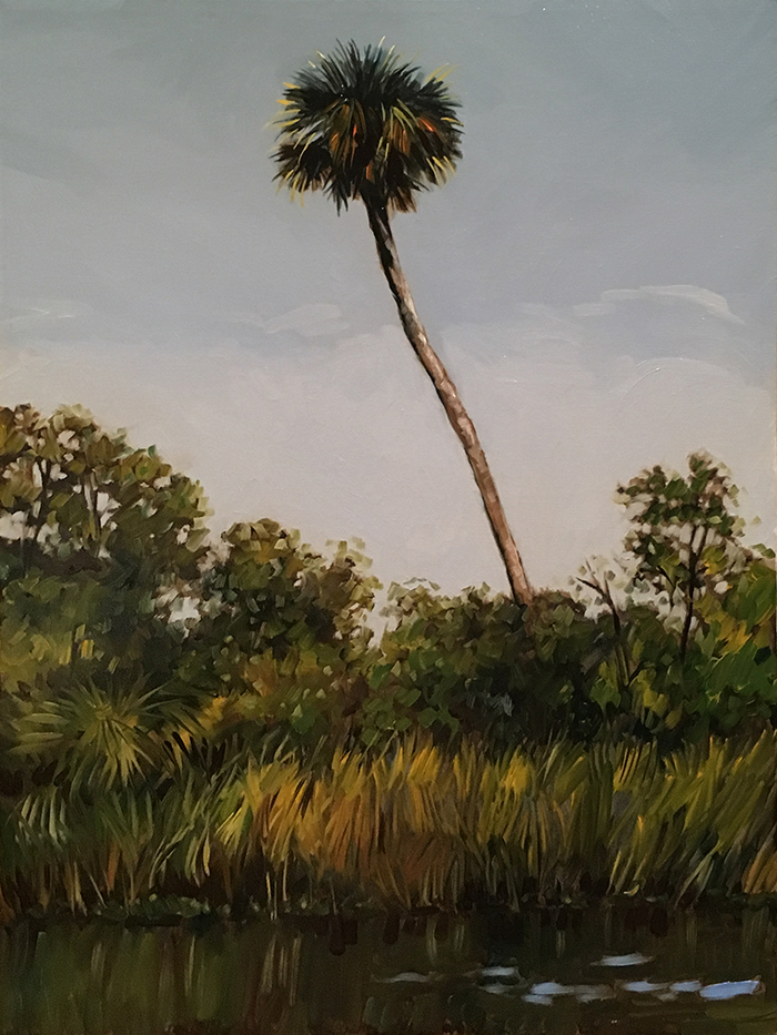 "Suwannee River Palm  (oil) 24"" x 18""  $750"